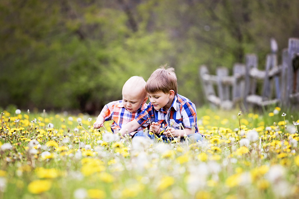 Two Children Playing in a Field of Dandelions